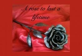 undying-rose-steel-rose